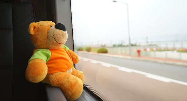 Teddy image symbolizing child-relocation